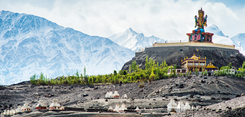 Amazing Nubra Valley Ladakh