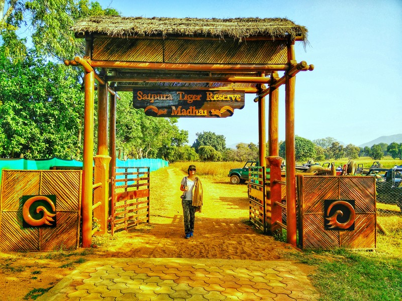 Game Drives Satpura National Park