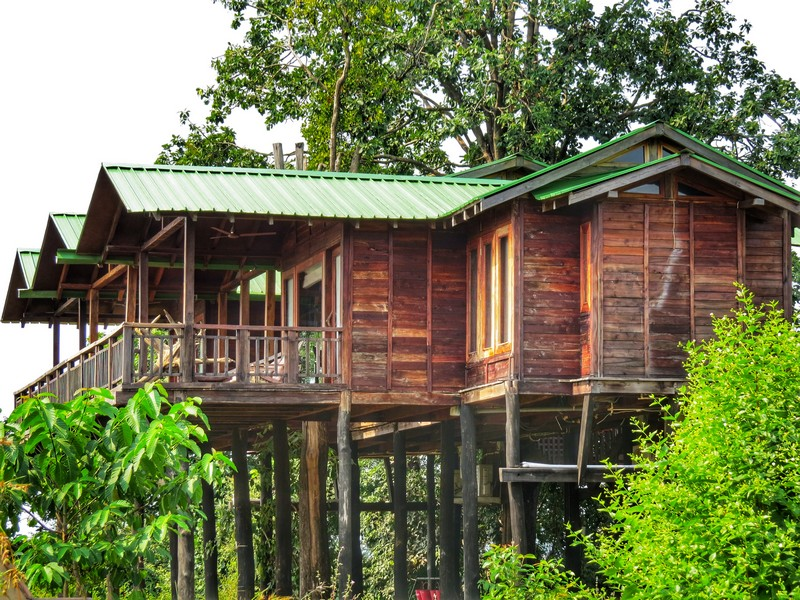 Treehouse in Satpura